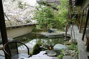 温泉が流れている池