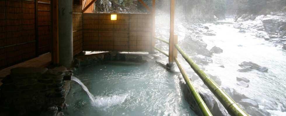 祖谷温泉 和の宿 ホテル祖谷温泉  イメージ