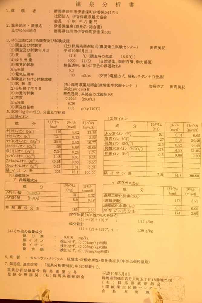 伊香保温泉 横手館 分析表