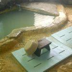 湯抱温泉 中村旅館