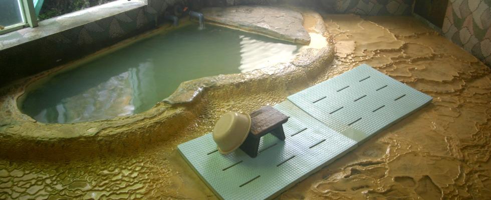 湯抱温泉 中村旅館イメージ
