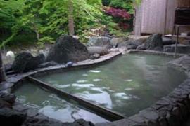 塩原元湯温泉-元泉館 温泉を楽しむ