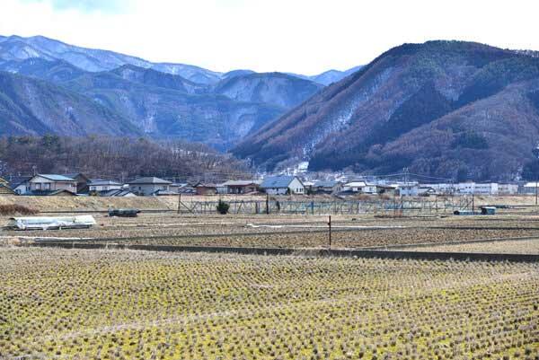畑や山に囲まれた加賀井温泉