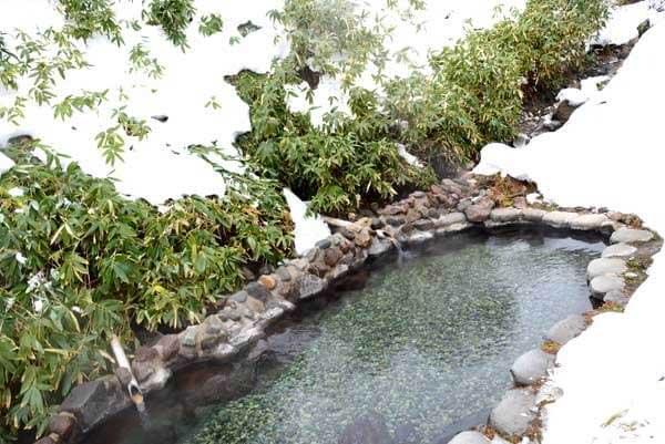 山ゆりの湯 女性用露天風呂 源泉掛け流し PH7.1~7.5(中性)