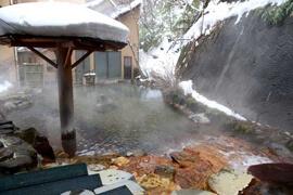奥那須温泉 大丸温泉旅館 温泉を楽しむ
