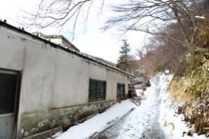 老松温泉への道