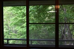 絵画のような窓からの景色