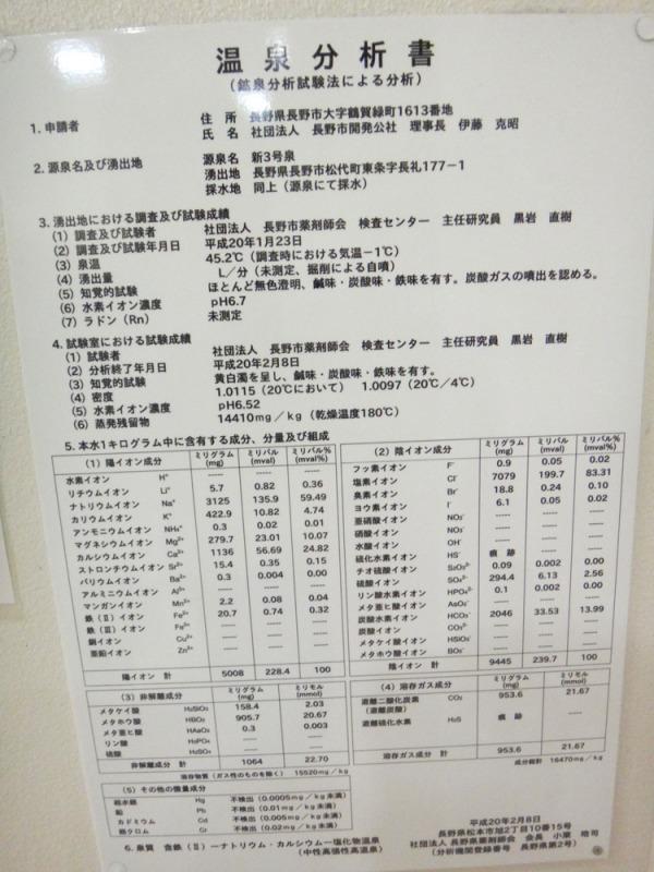 松代温泉 松代荘分析表