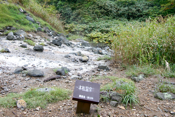 一本松温泉-一本松たっこの湯1