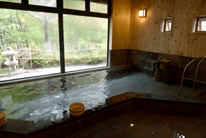 内湯 源泉かけ流し ph7.8 浴槽温度42.6度 源泉温度46.1度