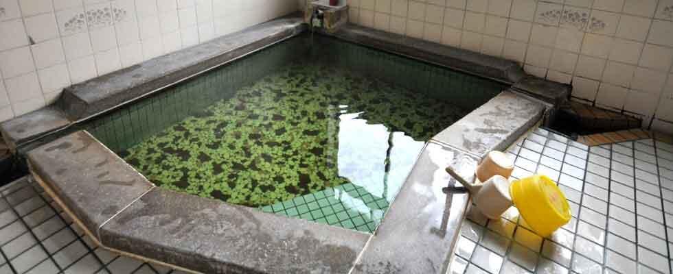 月岡温泉 さかえ館 イメージ