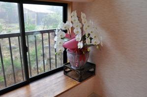 胡蝶蘭が飾られていた
