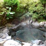 谷津温泉 薬師の湯