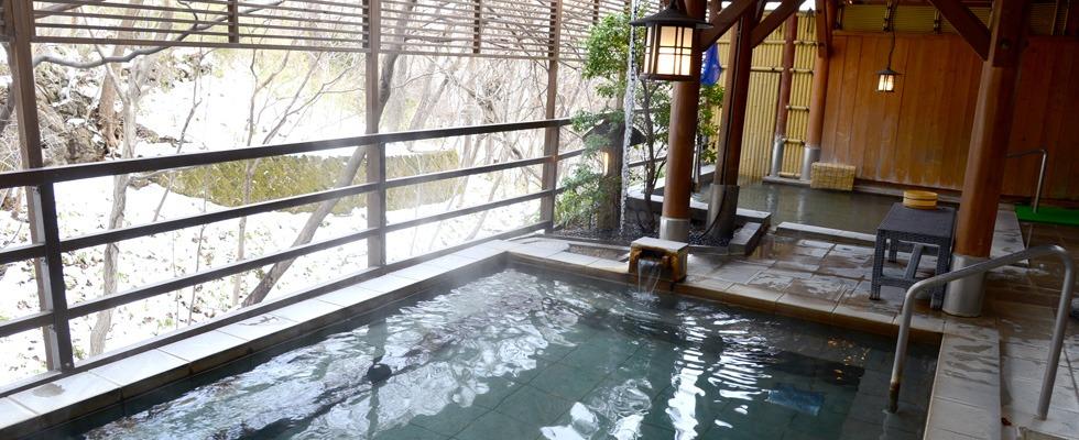 新那須高原温泉 こころのお宿自在荘イメージ