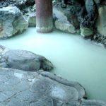 箱根温泉供給株式会社 供給温泉(大涌谷温泉)