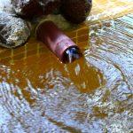 湯ヶ島温泉 河鹿の湯