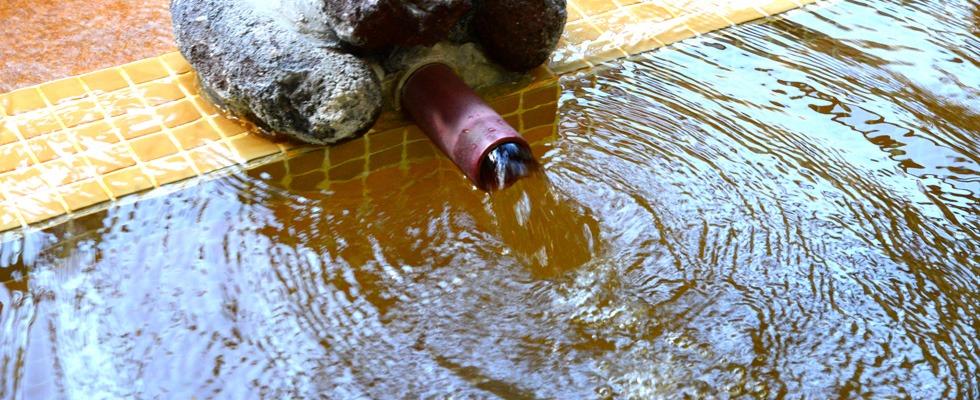 湯ヶ島温泉 河鹿の湯イメージ
