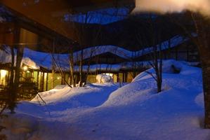 雪景色がライトにあたって綺麗