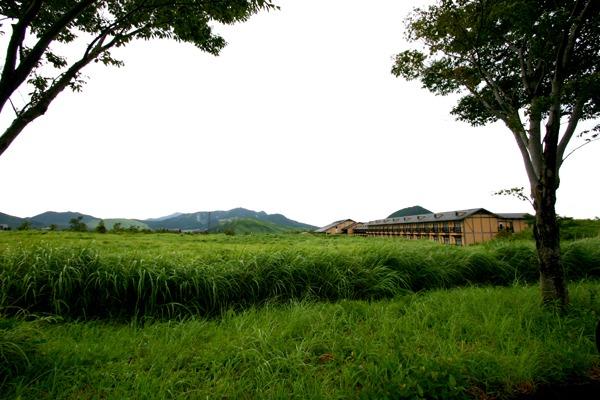 塚原温泉 湯布院高原ホテル1