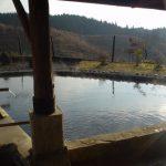 扇温泉 おおぎ荘