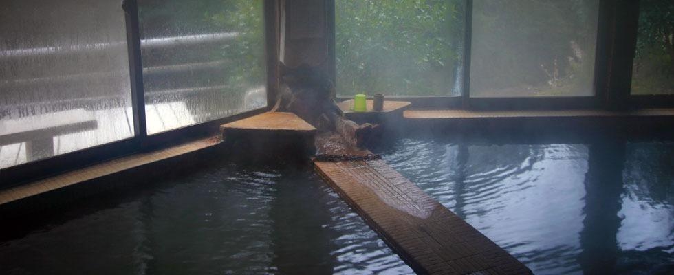 きのこの里 日の出温泉イメージ