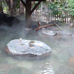 黒川温泉 瀬の本館 夢龍胆