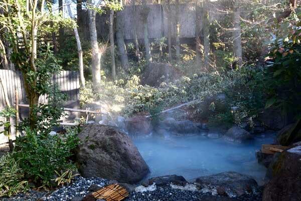 女性用露天風呂 源泉掛け流し pH9.0(アルカリ性) 浴槽温度:42.1度 鮮度:8時間以上で1回転