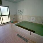 奥熊野温泉 アイリスパーク 女神の湯