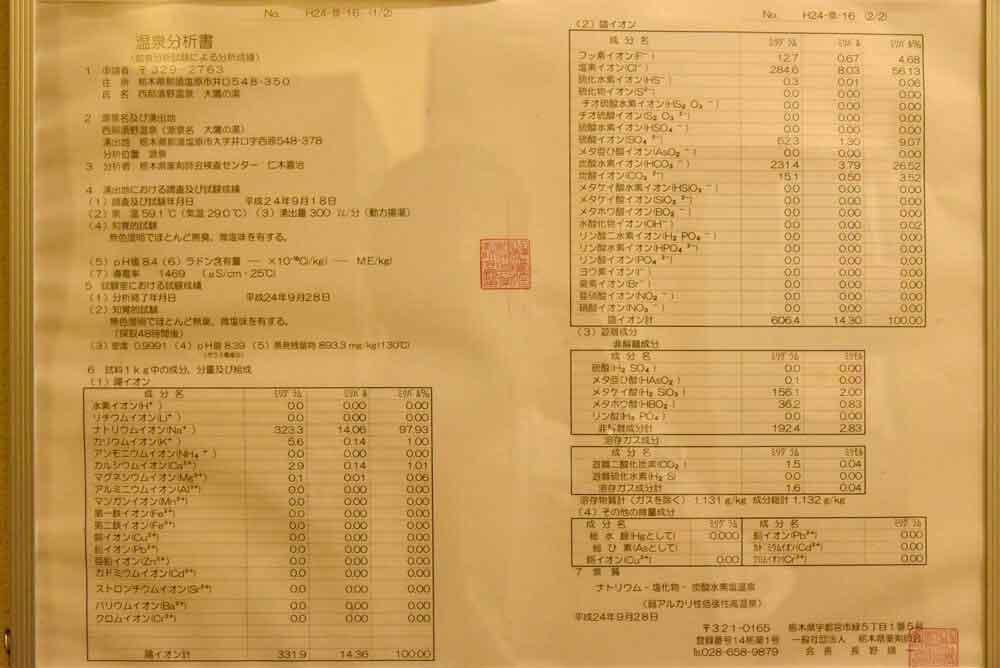 西那須温泉 大鷹の湯 分析表