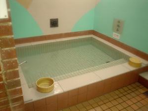 サウナ用水風呂
